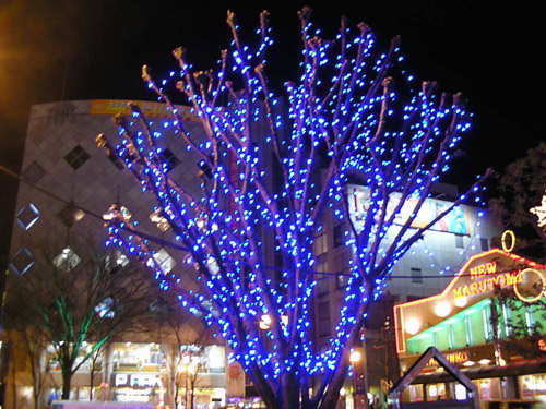 Stringing christmas lights on outdoor trees democraciaejustica urbanslidecom aloadofball Choice Image